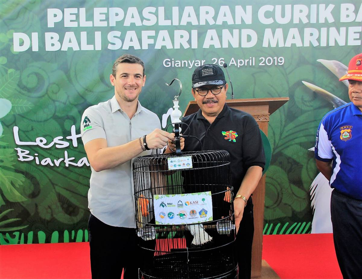 BALI SAFARI PARK RELEASES BALI STARLINGS INTO THE WILD TO SAVE THIS ICONIC NATURAL HERITAGE