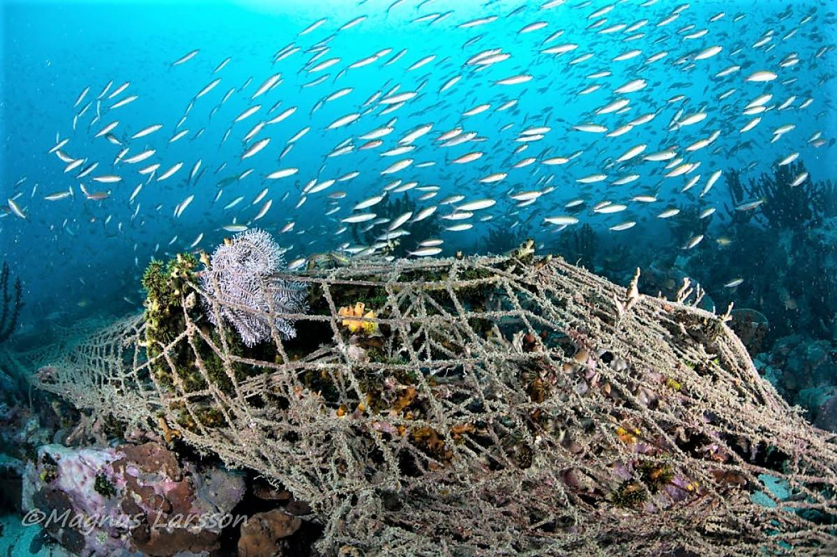 CAMPAIGN BEGINS TO CLEAR 'GHOST NETS' FROM MERGUI ARCHIPELAGO