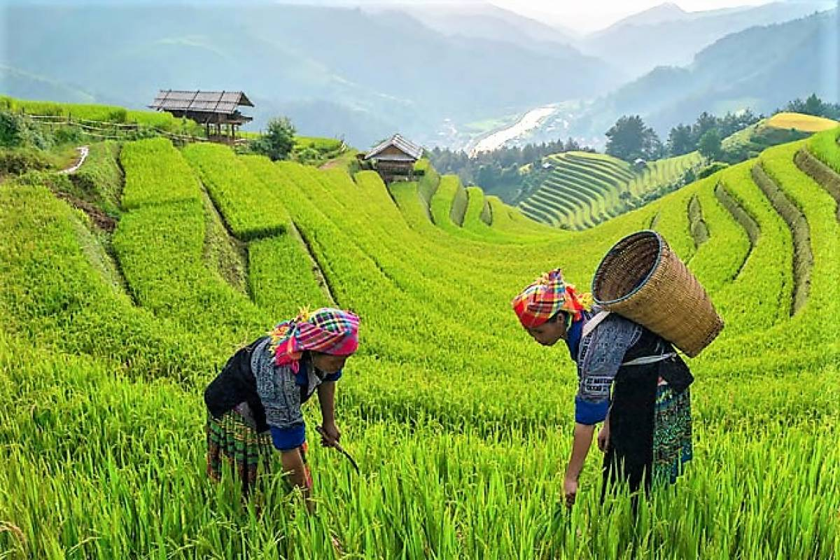 World Tourism Day 2020 - Tourism and Rural Development