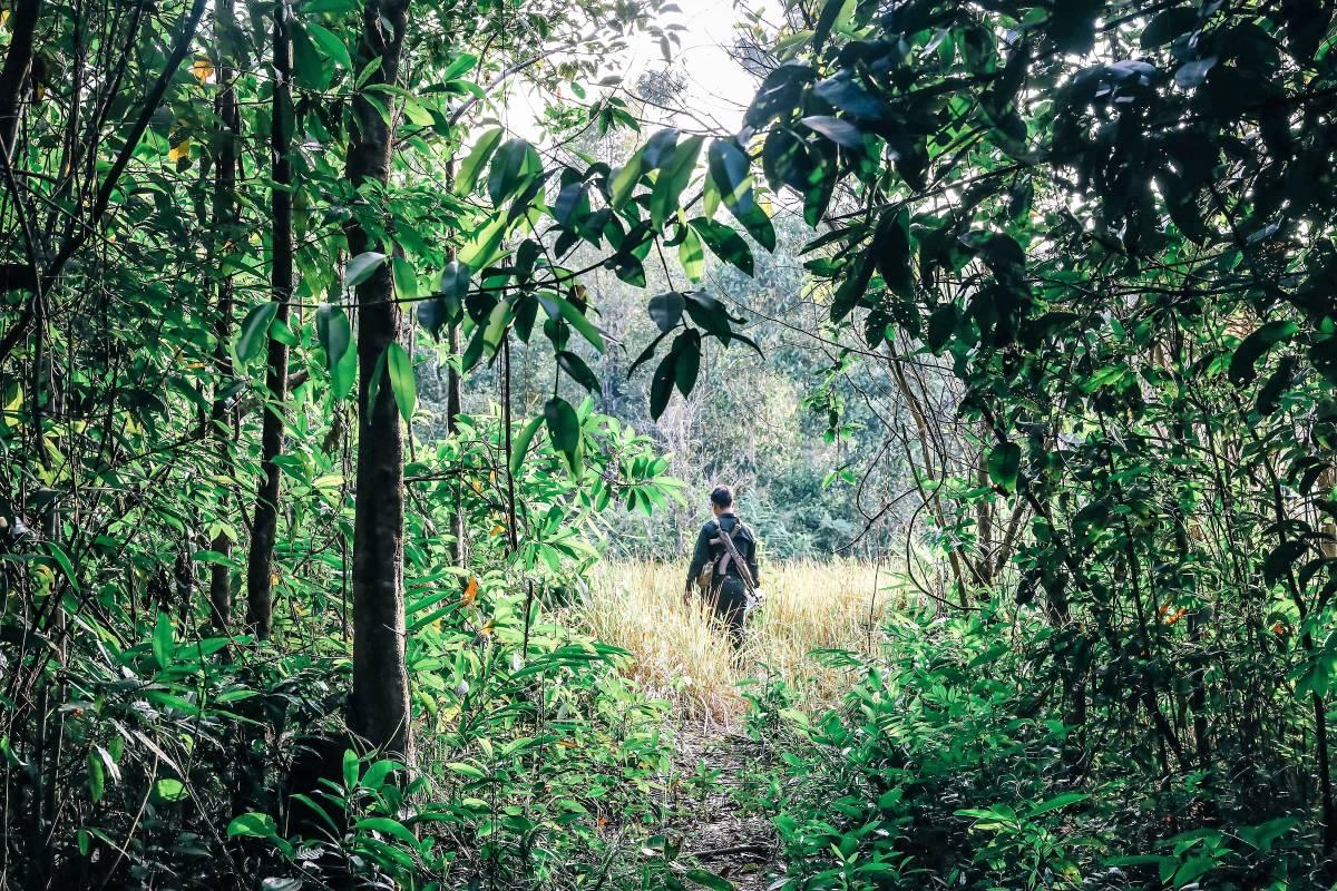 Shinta Mani Foundation and Shinta Mani Wild Honour Three Important Days on the Conservation Calendar