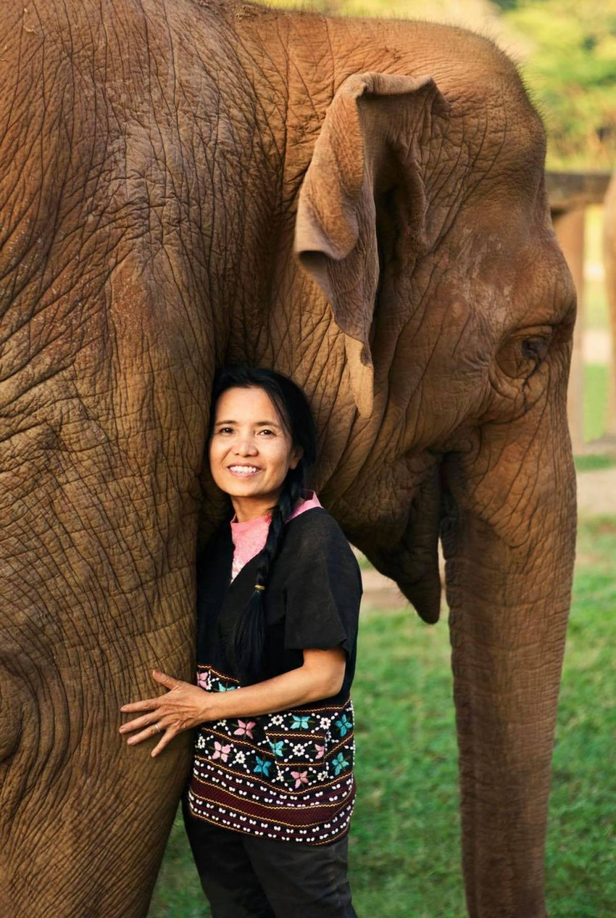 137 Pillars Hotels & Resorts Partners with the Elephant Nature Park Chiang Mai Raising Funds and Awareness for Elephant Conservation and Reforestation