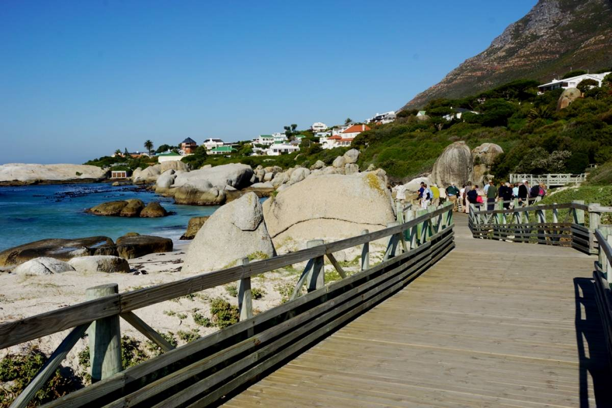 Cape Town - Day 7