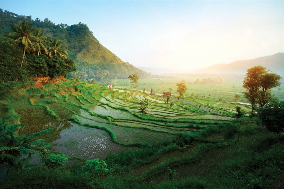Save $1000 Per Person Off Eastern Oriental Express With Railbookers