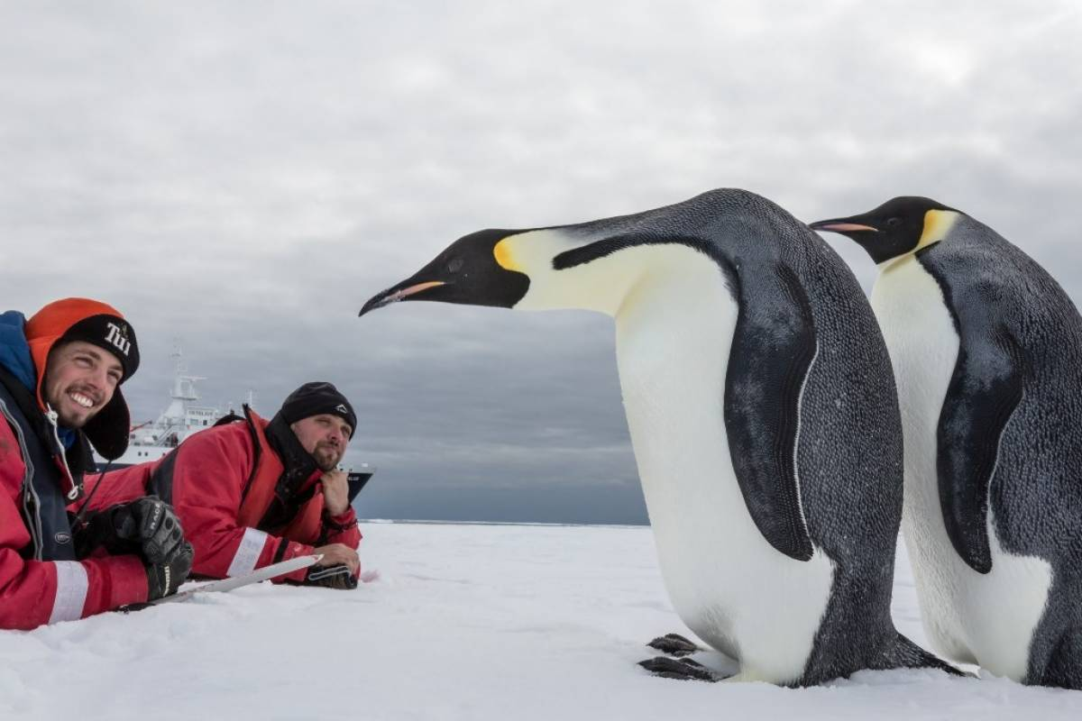 Oceanwide Expeditions supports Marine Protected Areas in Antarctica