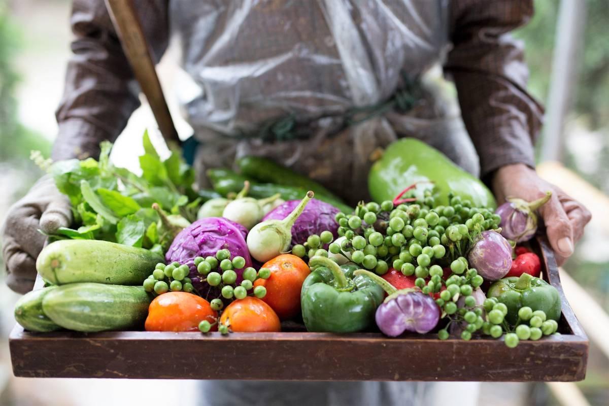137 Pillars House Celebrates Asian Organic Gourmet Festival