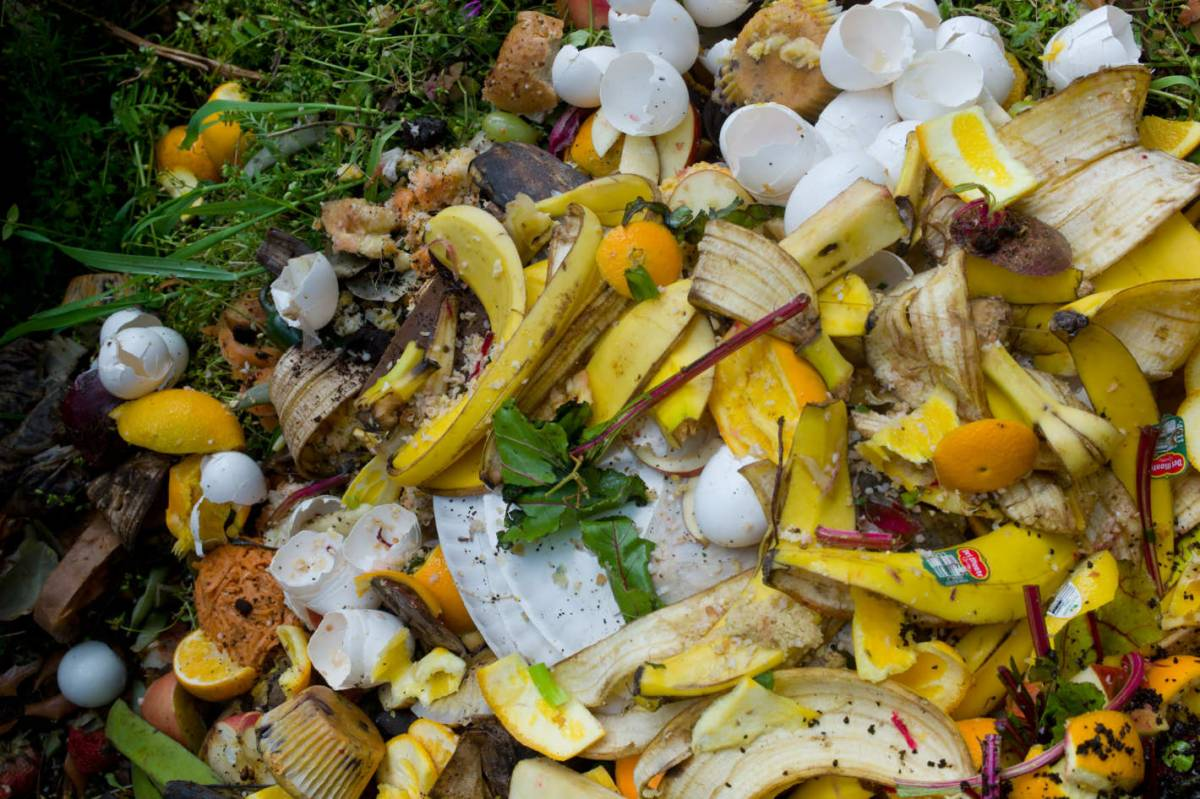 PATA launches food waste campaign