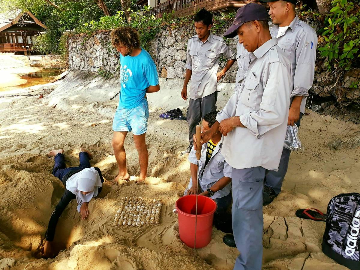 YTL Hotels Strengthens Commitment to its Lang Tengah Turtle Watch at Tanjong Jara Resort Initiative